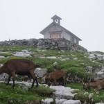 Kapelle auf der Glattalp